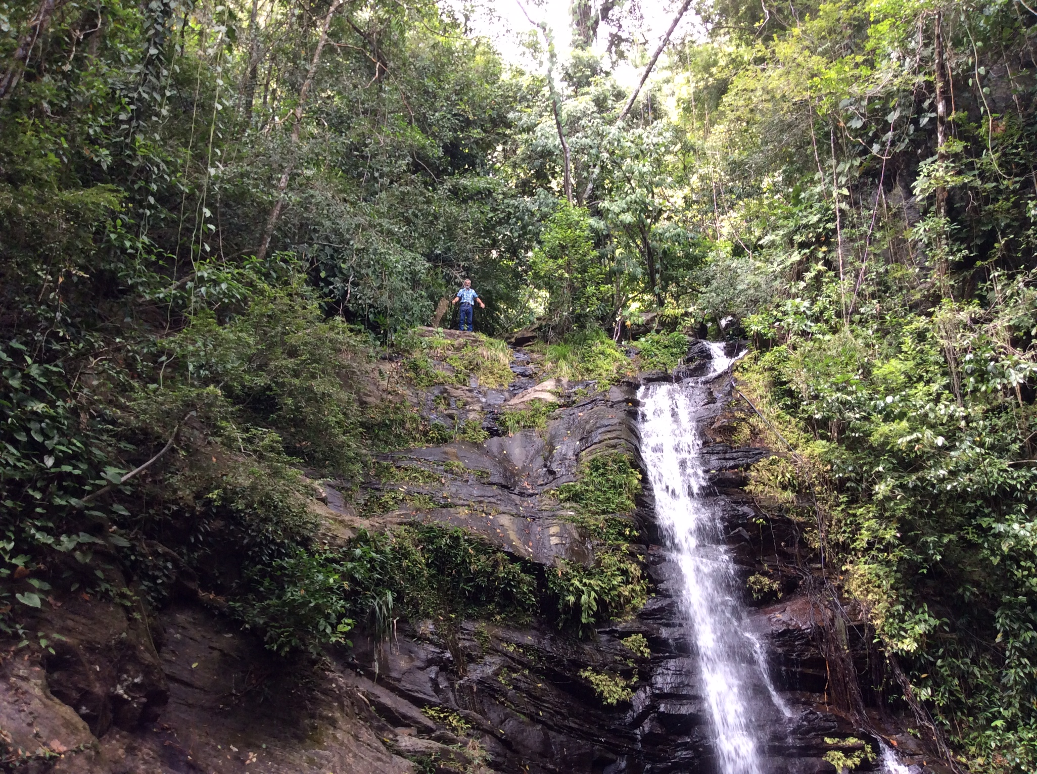 Beautiful Waterfalls a 20 minute drive from Mayacan!