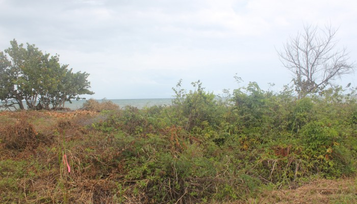 Belize Waterfront Lot For Sale - $125,000